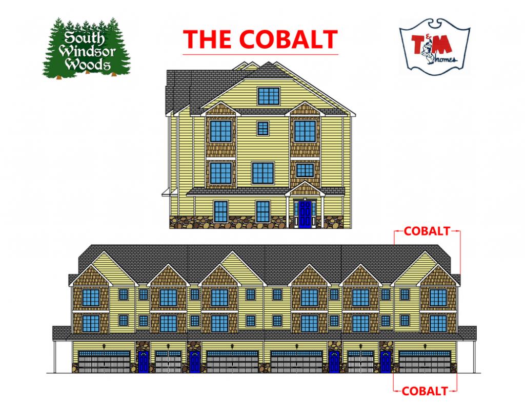 The Cobalt - Building